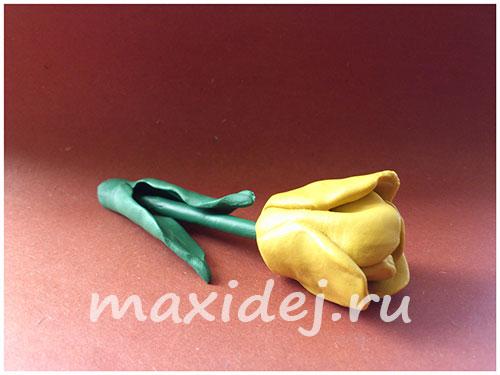 цветы из пластилина для детей